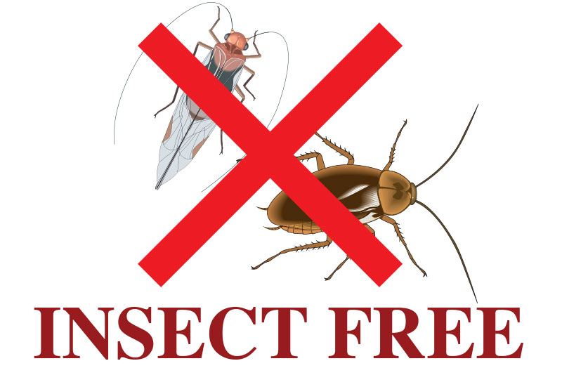 insect-free